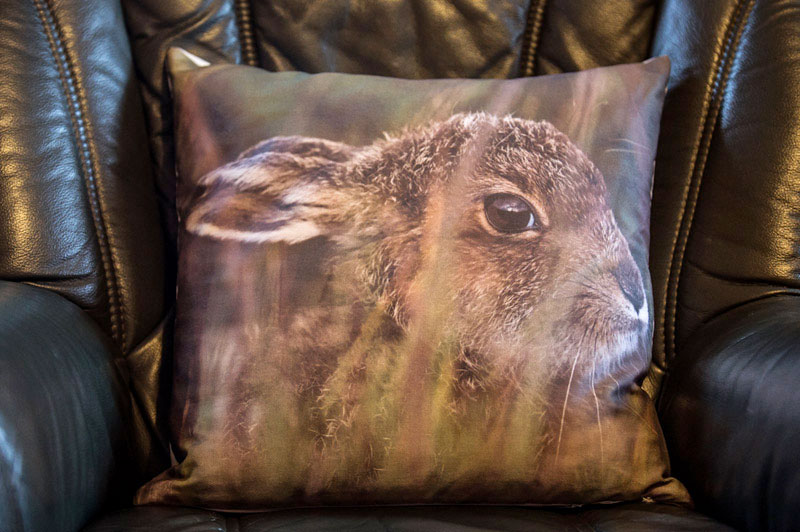 Mountain Hare Cushion Cover